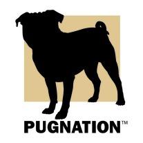Pugnation